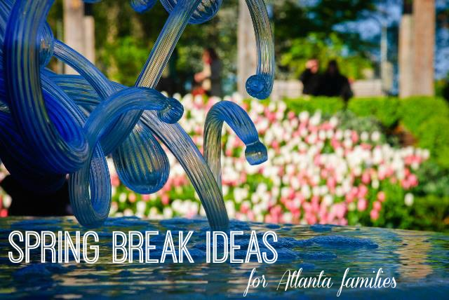 Spring Break Ideas for Atlanta Families